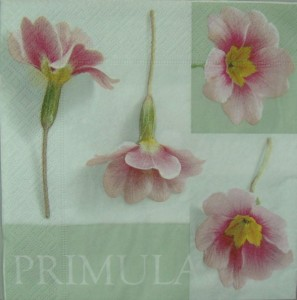 Serwetka do decoupage 2588 Primula